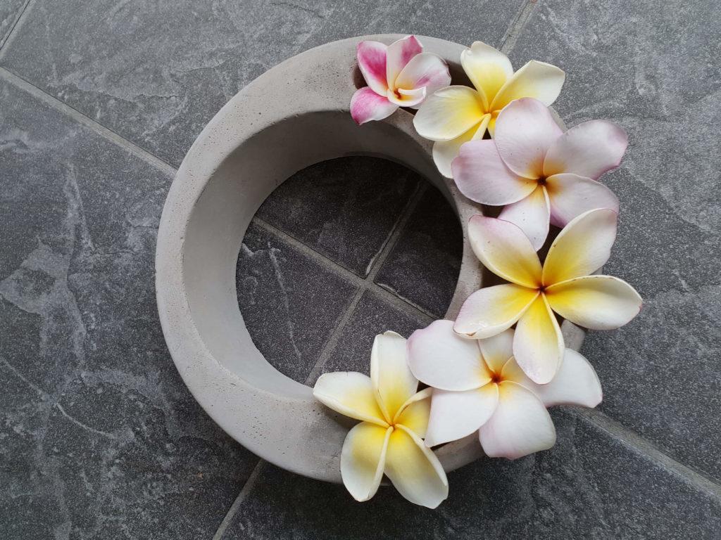 Venusblume Lichtzentrum Melinda Hebenstreit Lomi Lomi Massage Nüziders Frangipani